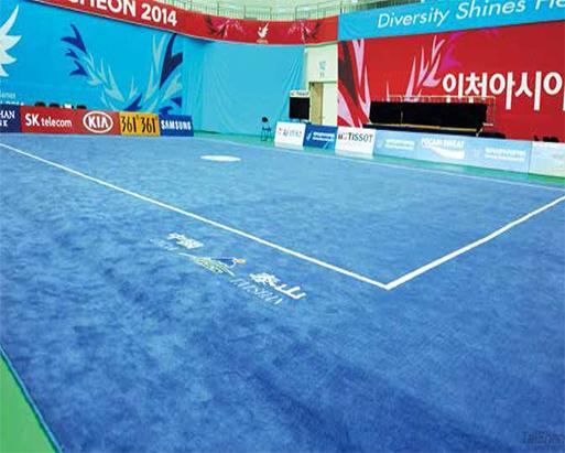 武術套路地毯 1